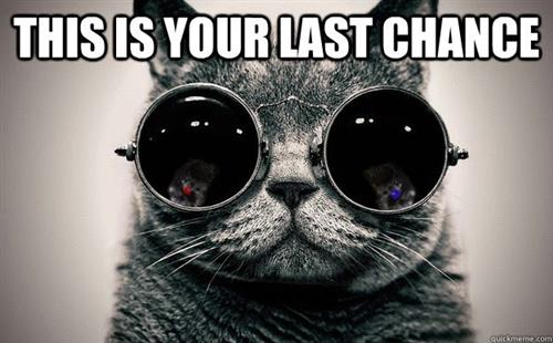 Cat with dark glasses with a message